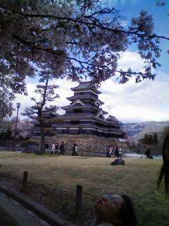 春めく長野で桜三昧