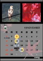 Dec12_11